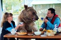 bear71.jpg